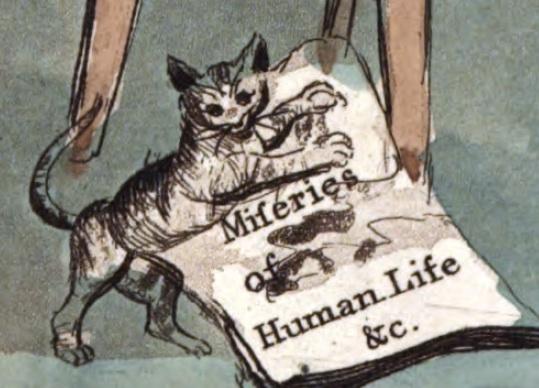 Miseries-cat